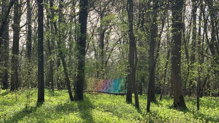 The rainbow in the woods created by 1st Thaxted Guides