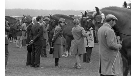 Princess Anne visited the Woodbridge horse show in May 1986
