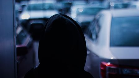 Cambridgeshire Constabulary has recorded a 25 per cent rise in stalking andharassmentoffences