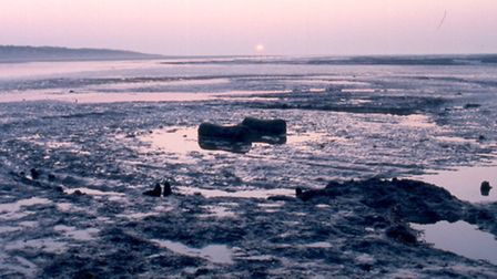 The second seahenge at Holme. Pic: NPS Archaeology