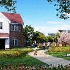 An artist's impression of the new development at Marham Park in Bury St Edmunds