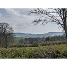 The picturesque views available on walks in the south west