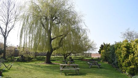 The lawn and willow tree at The Bull Freeshouse, Troston, Suffolk