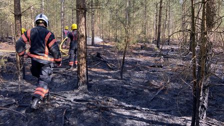 Fire crews were alertedat around1pm on Monday, April 26, to reports of a fire at Brandon Country Park, just off the A1065.