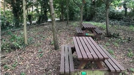 The woodland area at White Court School, Great Notley will be transformed