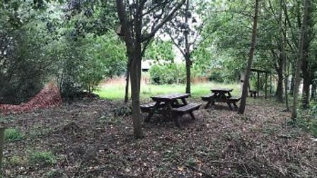 The woodland area will be transformed at White Court School, Great Notley