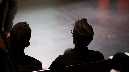 Speakers at TEDx talks can present any subject in any way they want to
