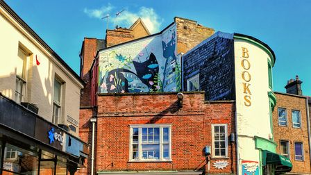 The Book Hive in Norwich