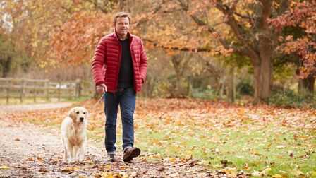 A brisk walk will do wonders for your fitness