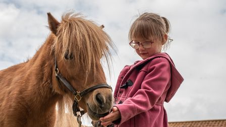 Jessica feeding a pony at Easton Farm Park. Picture: Sarah Lucy Brown