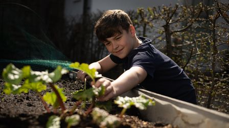 Thomas Green tending to his vegetable seedlings outside his house. Picture: Sarah Lucy Brown