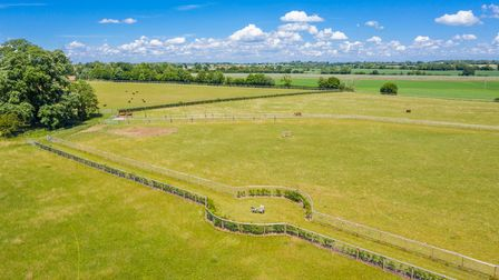 Aerial photograph of bright green paddocks fenced off with hedges, trees under bright blue sky