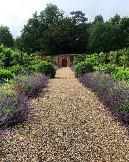 Beyond the Wall's herbaceous border
