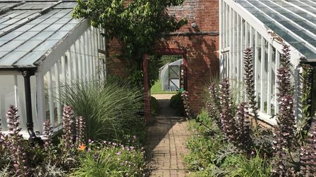 Beyond the Wall glasshouses and garden path