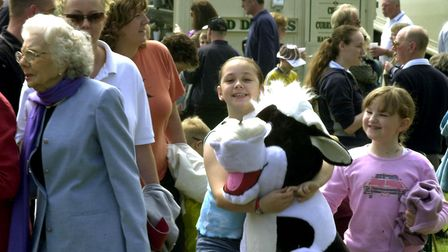 SOUTH SUFFOLK SHOW 2002A shortage of cattle to see but you could always win your own on the side