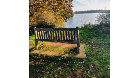 Alton Water near Ipswich is a great place for a walk