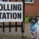 Bruni celebrates his first birthday in the rain waiting outside one of Attleborough's Polling Stati