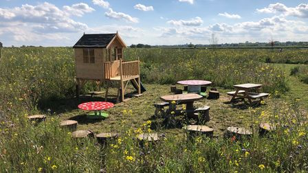 Inside Mad Hatters Campsite & Glamping in Ely, which is hosting a mini-festival