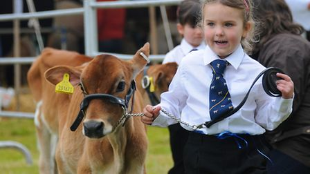 A young handler and her calf at last year's show. Picture: ANTONY KELLY