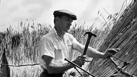 Reed thatching using iron reed hooks to hold a sway in position, Norwich.