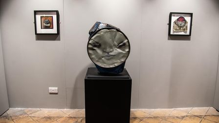 Artwork by My Dog Sighs in the new exhibition at Moyses Hall. Picture: Sarah Lucy Brown