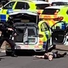 An armed police officer points his weapon to a man lying on the ground