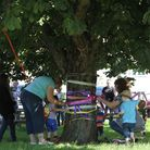 Lyng conker tree. Villagers are trying to save the horse chestnut tree outside the Fox pub,