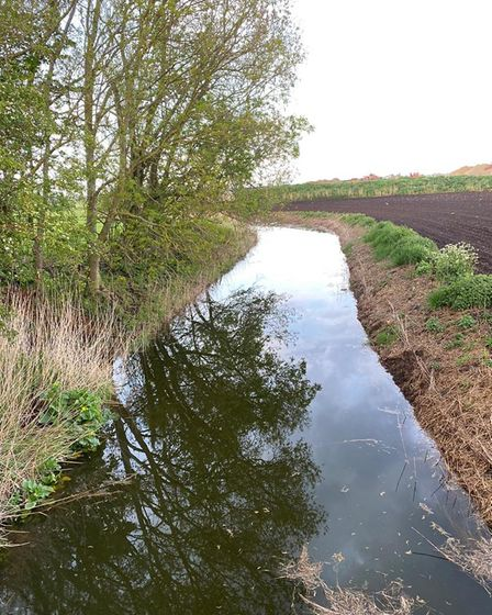 Dredged earlier this year, Crooked Drain looks in pristine condition.