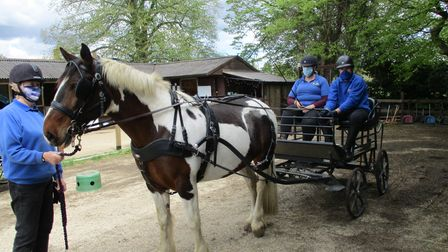 Volunteers at the Magpie Centre with horse Tonto.