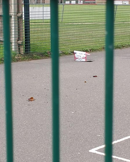 Sherley Drewry alerted residents to broken glass after visiting the Memorial Playing Field in Downham Market.