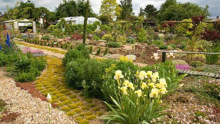 23A Perry Road, Buckden, a quirky plantsman's paradise, much of it planted in the Japanese style, will be open on May 28-30