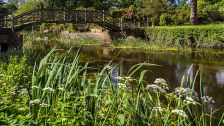 Riverside setting for the gardens at Island Hall, Godmanchester.