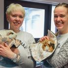 Diana Taylor and Michelle Mills, owners of Cavies & Cake guinea pig therapy centre in Fakenham. Picture: Danie
