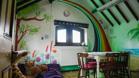 The sensory room at Cavies & Cake guinea pig therapy centre in Fakenham. Picture: Danielle Booden