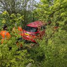 A red car in a bush. Behind a branch with thick green leaves: two men, wearing orange overalls