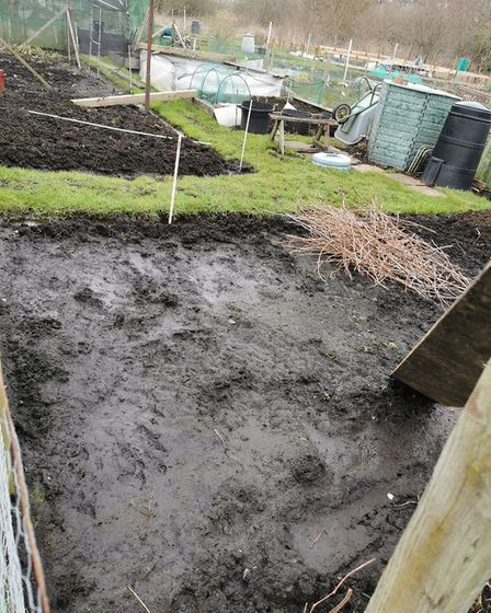 The allotments in Brandon after the rain in December