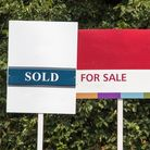 House for sale and letting signs, blank for your design