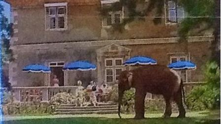 Thorney Wildlife Park was hugely popular in the 1970s but was forced shut in the late 80s