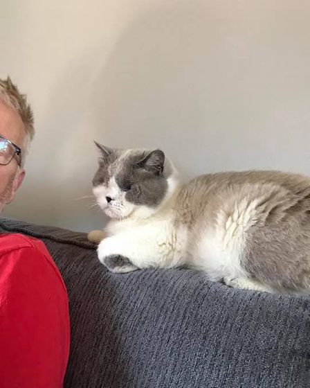 Duncan the blind cat is settling in his new home in Gorleston with Kate and David Short.