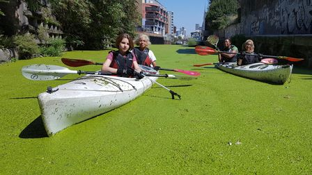 Duckweed often appears on the Limehouse Cut during summer months that needs to be cleared up.