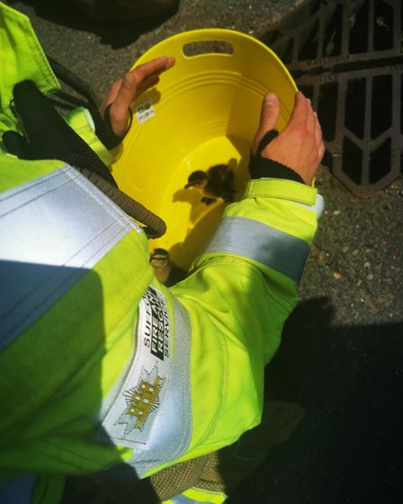 One crew was sent from Long Melford fire station to rescue the four ducklings
