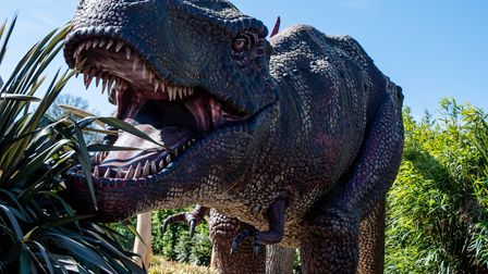 Roarr! Dinosaur Adventure attracts visitors from across the UK.