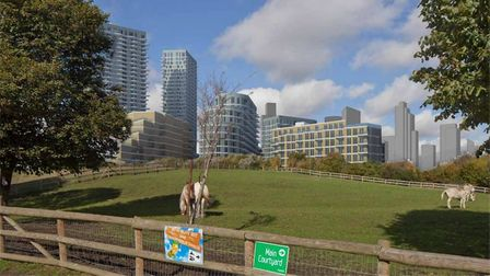 Visit Mudchute Farm and this is the skyline view you'd get if Crossharbour town centre plan goes ahead on Isle of Dogs