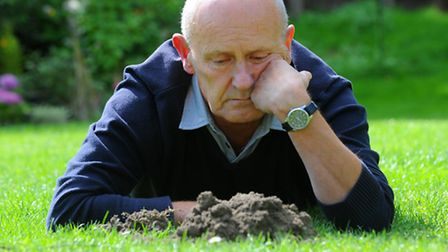 Derek James called in the Lady Mole Catchers after the tell tale mounds started appearing in the gar