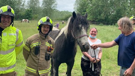 Suffolk Fire and Rescue crews rescued a horse that was stuck in a ditch in Sudbury