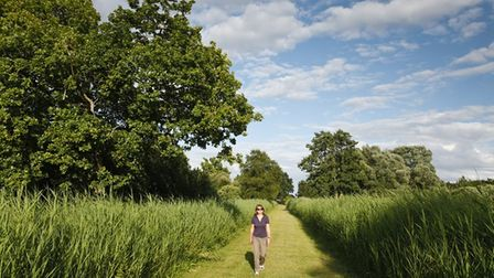 The Great Fen Nature Guided Walk onSaturday June 19 from10.30am to 12.30pm.