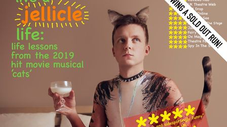 """Linus Karp's """"how to live a jellicle life: life lessons from the 2019 hit movie musical 'cats'"""""""