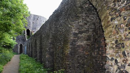 The city wall leading to the Black Tower at Carrow Hill. Picture: DENISE BRADLEY