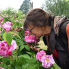 Tina Limmer of Beales Roses. Major Grahame of Daws Hall jas a rose collection of 150 roses Picture: