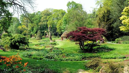 Spring in the Bressingham gardens founded by Alan Bloom.; Photo: Bill Smith